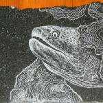 Granite Etching of Moray eel. The texure of rough spotted skin is achieved via tiny points & lines.
