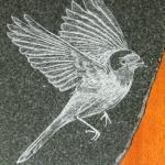 Granite Etching of Red-Headed Warbler. This rare visitor to the USA is effectively rendered using layered lines.