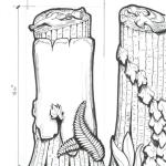 Marble Tree Stump concept drawing used for the marble monument displayed above.
